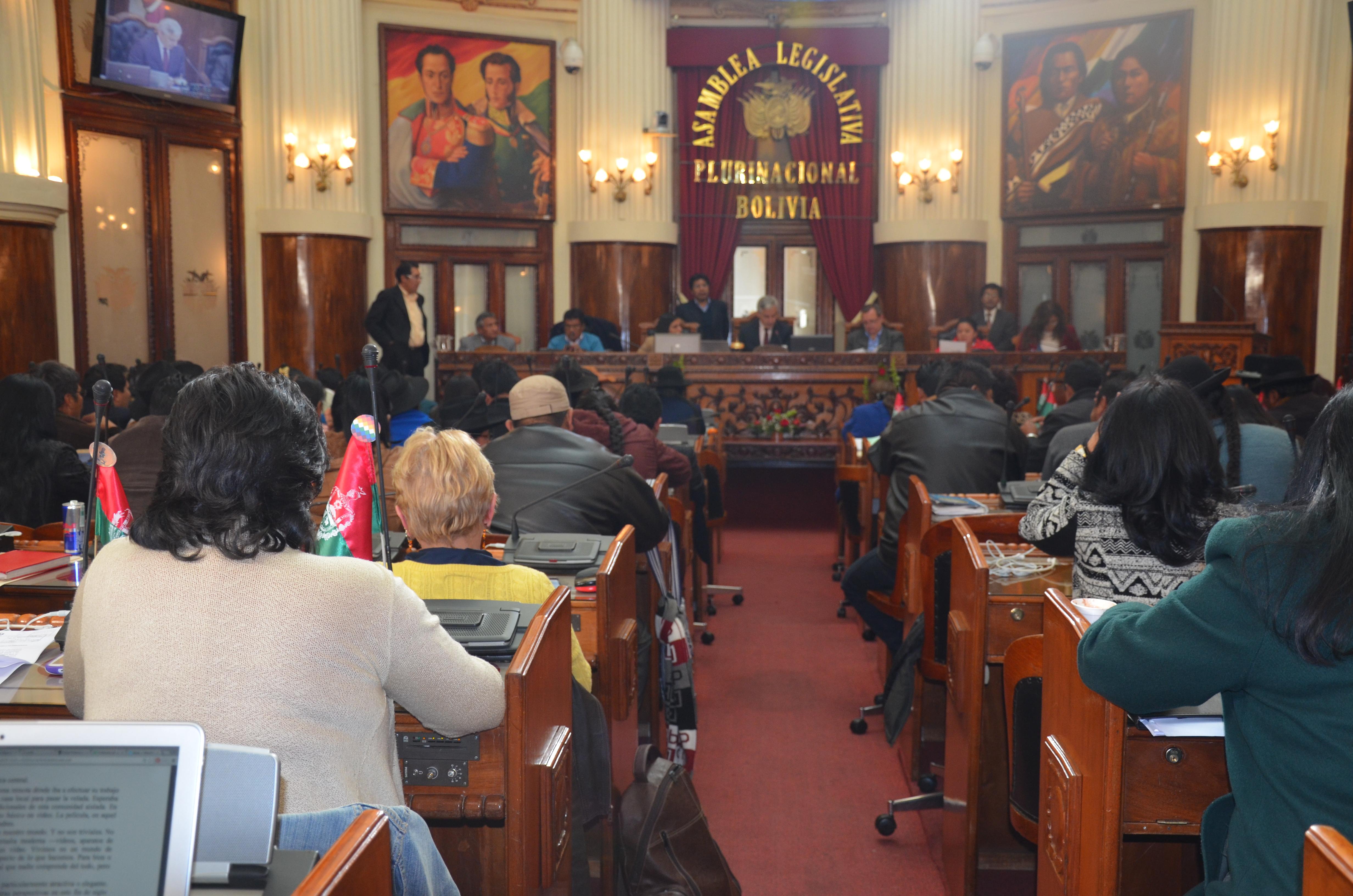 ALP declara de interés y prioridad nacional la ejecución del Proyecto Hidroeléctrico Irivizu